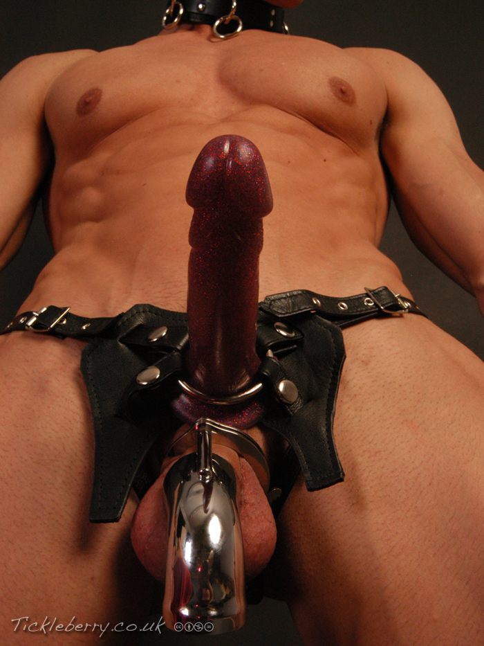Harness And Dildo 73