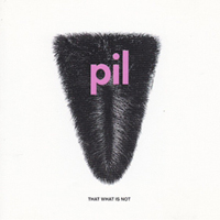image of PIL album cover showing fluffy elongated triangle parted in middle
